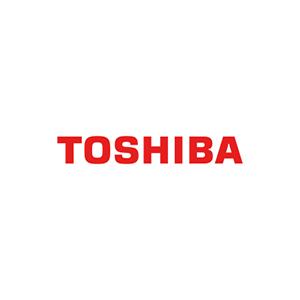 Toshiba Servis logosu